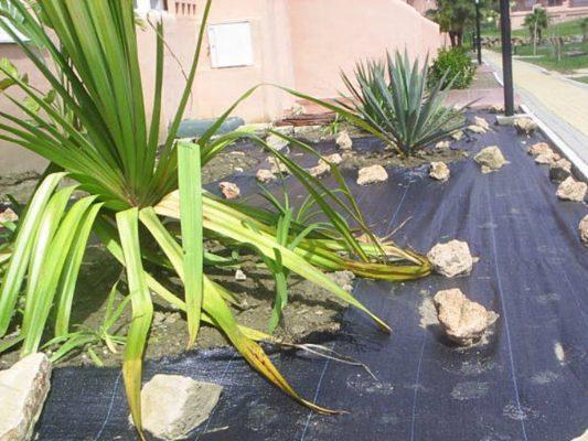 2008 pm4 portales de jardín preparados