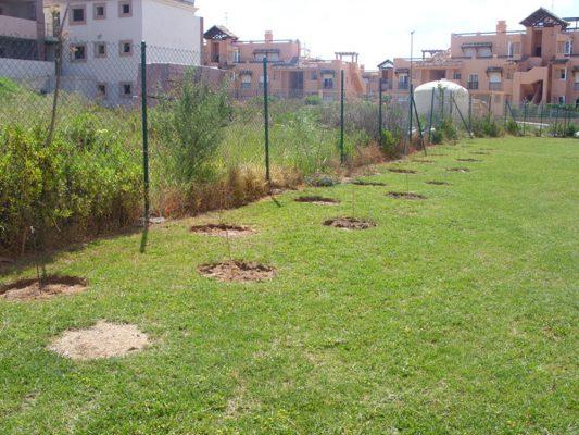 2010 se plantan árboles para enmascarar el apartahotel