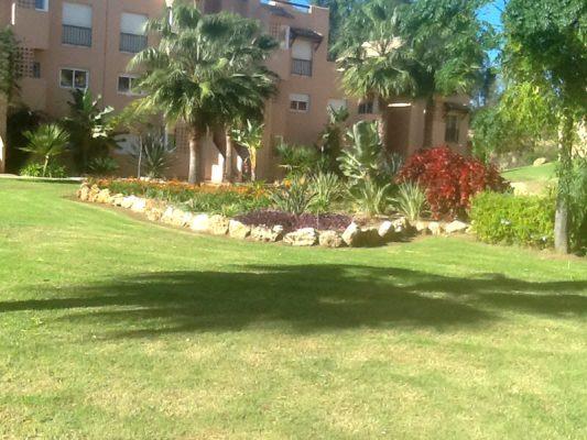 2013 gran zona de plantación en los jardines de Casares del Sol